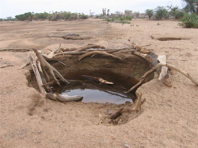 6 months previously, this whole area was a freshwater lake. Now locals have dig down into the bed to find water (Simon Roughneen, n.Kenya, March 2006)