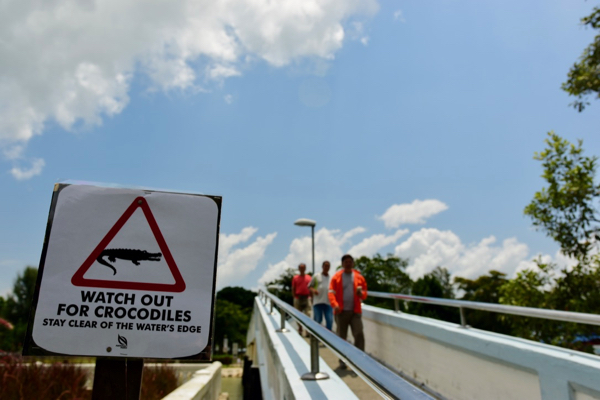 Crocodile warning sign at Changi Port in Singapore (Simon Roughneen)