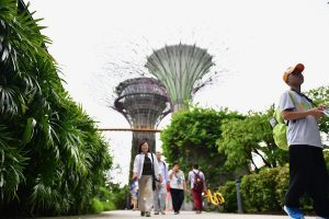 The Gardens By The Bay are one of Singapore's main tourist attractions (Simon Roughneen)