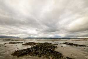 Beach near Westport on Ireland's Atlantic coast (Simon Roughneen)