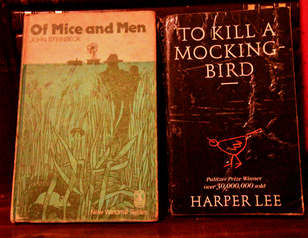Of Mice and Men and To Kill a Mockingbird on a bookshelf in a west of Ireland home (Simon Roughneen)